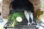 Mackerel on the Tuscan Grill