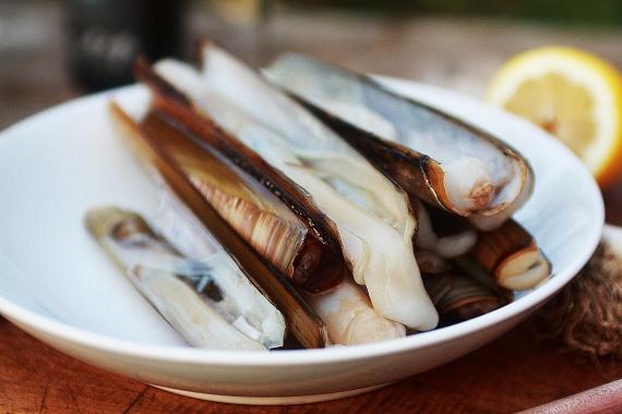 Razor clams